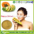 La fábrica del gmp suministro de puro de la papaína, orgánica extracto de papaya, extracto de papaya