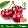 GMP factoty dried cherry powder