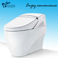 China Toilets Toto sanitary ware Smart China toilets