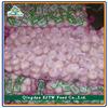 5KG/Mesh Bag China Fresh Hybrid Garlic Price, Cold Room Fresh Hybrid Garlic