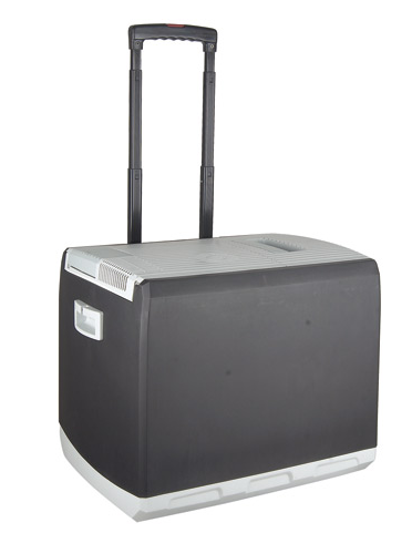 portable fridge.png