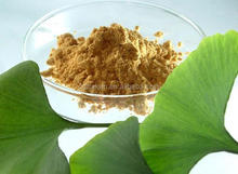 100% Natural Lactones 6.0% Ginkgo Biloba Leaf Extract
