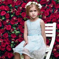 Cotton fabric baby frock designs,frock fancy smoking dress for kids