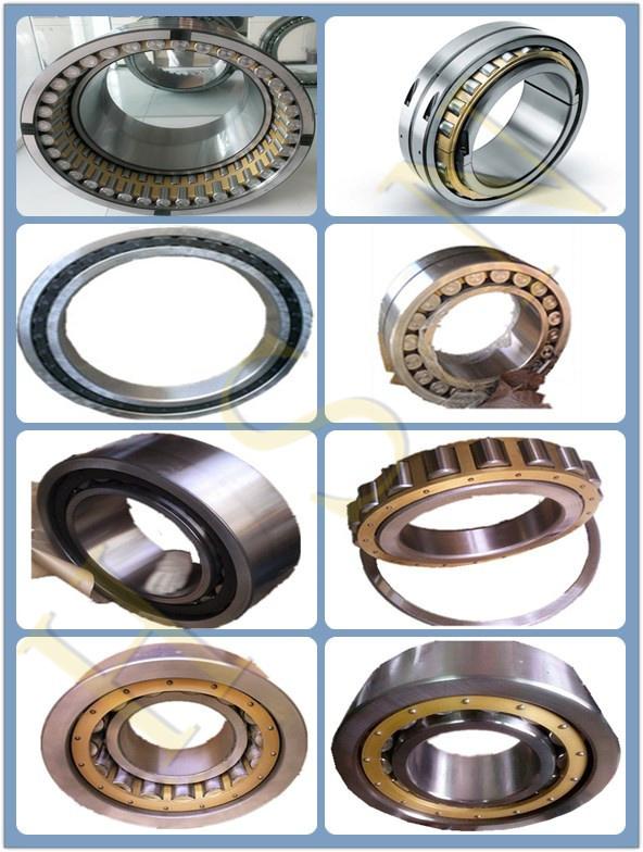 cylindrical roller bearing.jpg