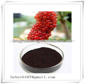 25% antocianina mulberry extrato de fruta