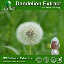 GMP Factory China Supplier Dandelion Herb Extract Dandelion Plant Extract Dandelion Extract 10 1