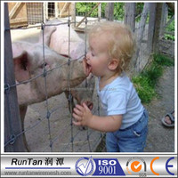 Galvanized Animal metal mesh hog wire fence ( accept customization )