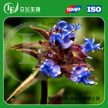 Suppliers Hot Sales Top Quality Maral Root Extract