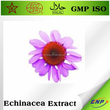 100% Nature Echinacea Purpurea Extract