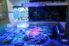 2015 hot sale 120w led coral reef aquarium lights Strong light saltwater reef tanks led aquarium lights