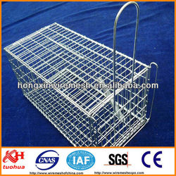 Black Powder Coating Iron Wire Animal Cages Factory