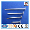 manufacturer Zinc coated/galvanized nails, brass roofing nails !!!