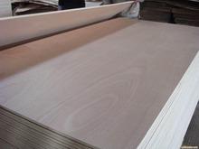 mahogany wood/mahogany trees/mahogany log rotary cut veneer coated plywood made in China