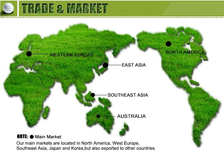 Trade & Market
