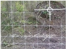 electronic fences for animals