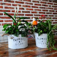 Home decor interior decorating metal flower pot