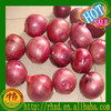 /product-gs/chinese-onion-2015-lowest-price--787200232.html