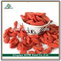 bio certificado de ningxia seca y libre de la muestra frutos bayas de goji