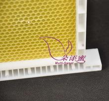 Ensamblado plástico marco colmena y plástico fundación FR-3-01