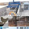 ( coelho, frango, peruzinho, bird) animais gaiolas de malha máquina de solda com o fio galvanizado