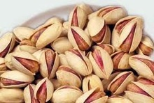Pistachio nuts in Bulk for sale