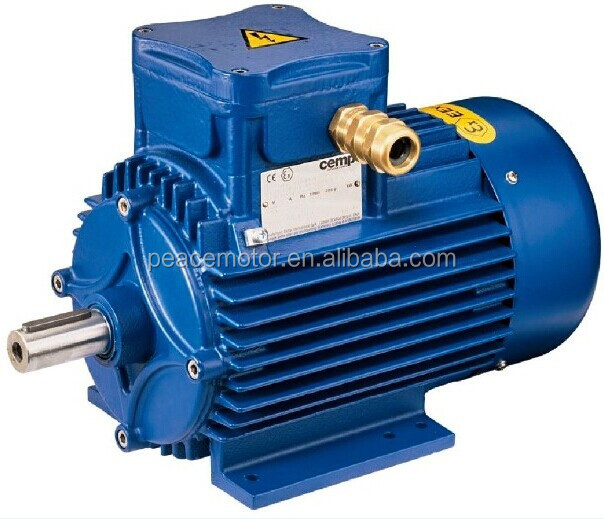 240v High Torque Low Rpm Ac Electric Motors Buy 240v