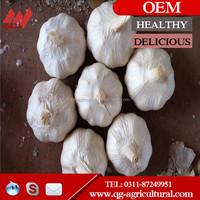 Chinese fresh normal white garlic/pure white garlic 2015 new crop
