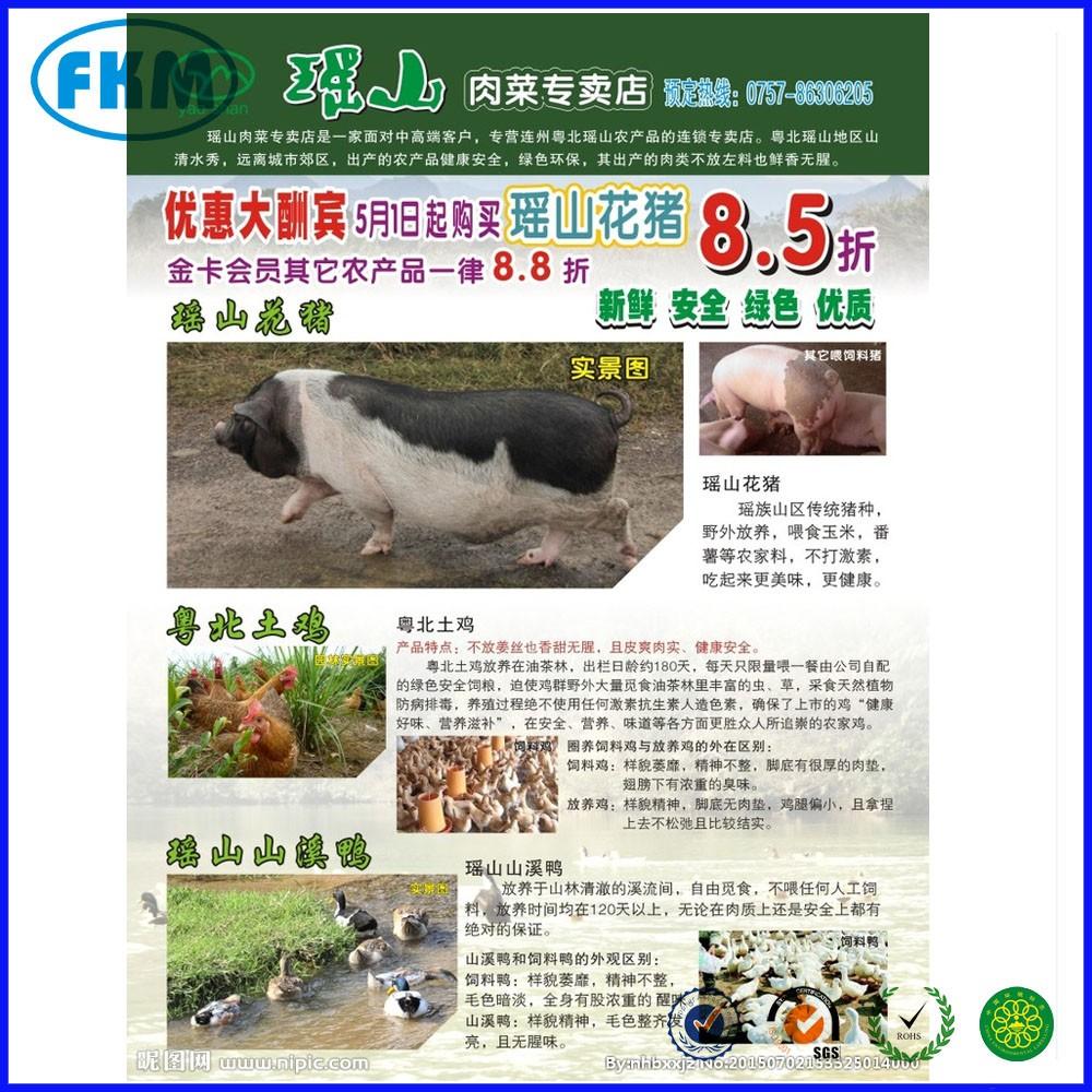 Adesivo Rivastigmina Bula ~ Shenzhen impressora adesivo de impress u00e3o flyer impress u00e3o a cores Impress u00e3o de papel e papel u00e3o ID