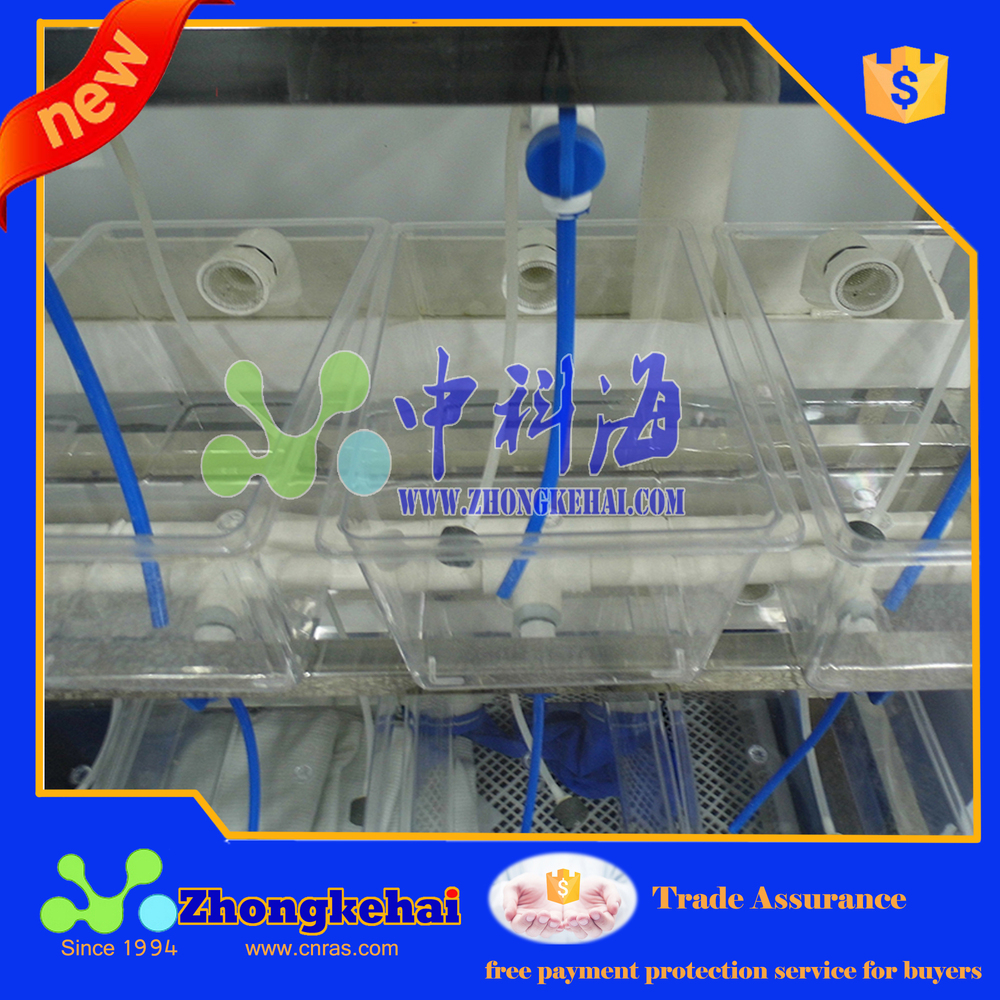 Laboratory small fish breeding system for test view for Fish lab test