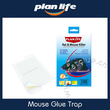 Glue Trap Rat & Mouse Killer Without Poisons Mouse Trap