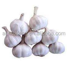 2015 Hot Sale Low Price Organic Nature Garlic HFS0005