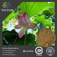 High quality weight loss lotus leaf extract