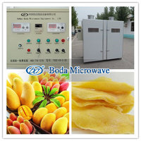 industrial Mango fruit tray dryer