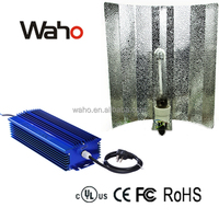 PWM/0-10V/Auto/Knob/dali/PLC dimmable electronic ballast for hydroponics/street road lighting/fishing lamp dimming lighting