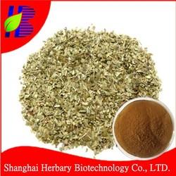 100% pure yerba mate tea extract 20%