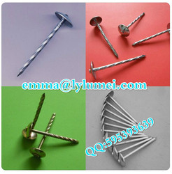 hot sale umbrella head roofing nails(factory price)