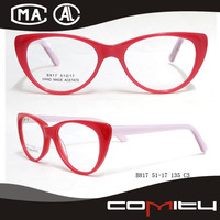 Lastest Unique Design 2013 Most Popular Eyeglass Frame