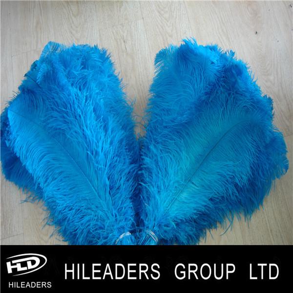 blue ostrich feather.JPG