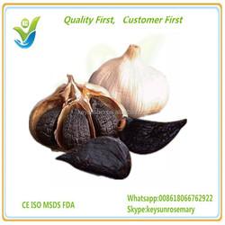 fresh garlic,garlic price in china 2016,garlic price