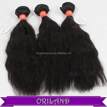 Top Quality Beauty 100% Virgin Hair Natural Wave Indian Human Hair