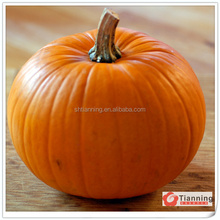 Full sense of pulp, pure and natural pumpkin oil aroma flavor for biscuit