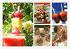 Customize shape round bamboo bbq skewer / fruit pick skewer stick