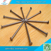 Building common wire nail, Construction Common nail iron nail factory