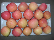 Good Quality Red Fresh Fuji Apple Chinese Fresh Red Fuji Apple For Cheap