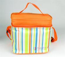 Hand carry cloth bag holding Oxford Bento Lunch bag cooler bag