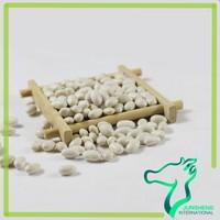 bulk Japanese Type White Kidney Beans for Sale