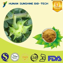 Healthy Product Anti-atherosclerosis Saponins Tribulus Terrestris P.E. Powder 20% / 40% / 70% / 90% Saponins