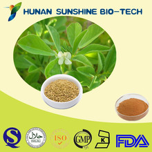 Fenugreek Seed Powder / 5%-98%4-Hydroxyisoleucine by HPLC / 25%-50% Furostanol saponins by UV / 25% , 40%, 50% Saponins