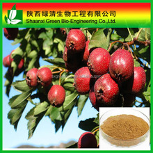 High Quality Hawthorn Berry Extract Hyperosides Total Flavonoid/High Quality Hawthorne Berry Extract, 2.0% Vitexin/Plant Extract