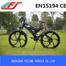 FUJIANG electric bicycle, electric bicycle low cost, electric bicycle light bulb with EN15194